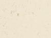 encimeras-compac_botticino1